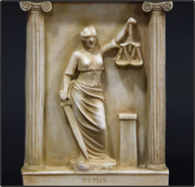 Группа юристов NPS совместно с миграционными юристами